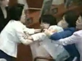 Huge Fight In South Korean Parliament