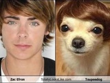 77 Hilarious Look-A-Likes