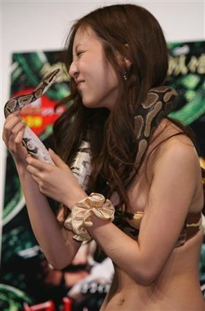 asian-girl-snake-6