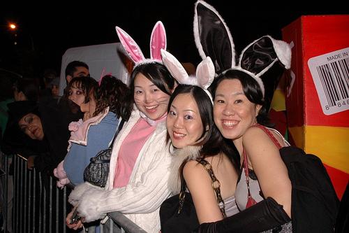 sexy-asian-girls-bunny-bunnies-hot-babes-24