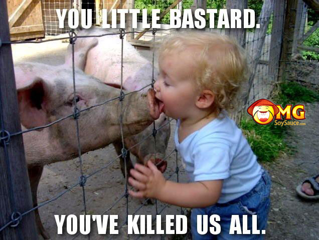 swine-flu-started-here1