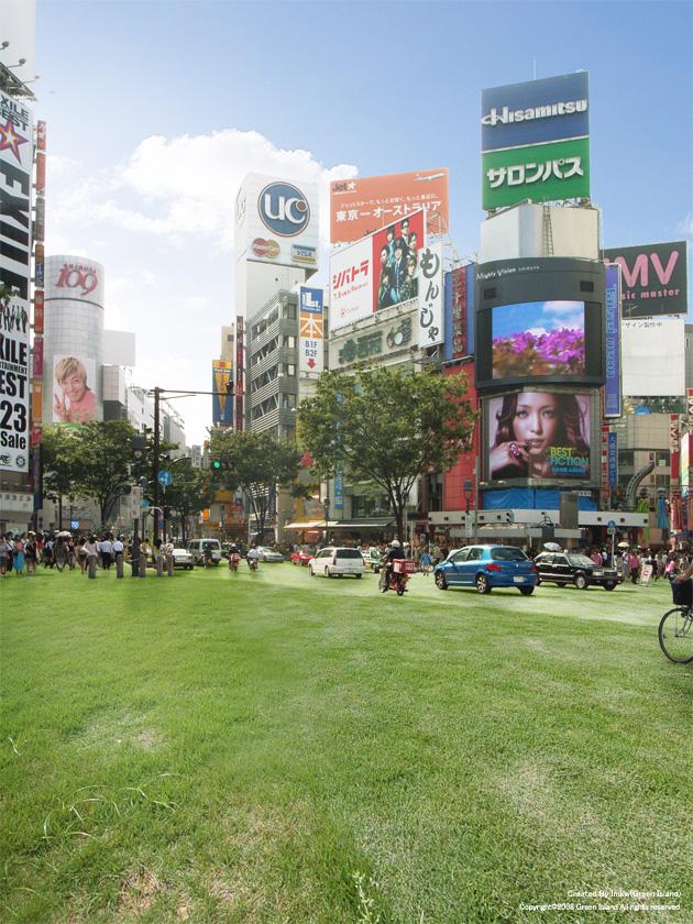 tokyo-japan-grass-streets-11