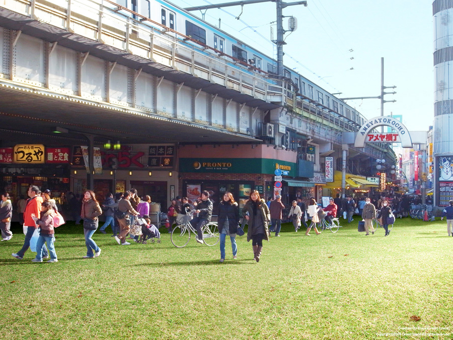 tokyo-japan-grass-streets-8