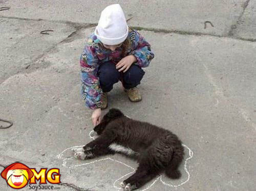 dog-getting-chalked-death