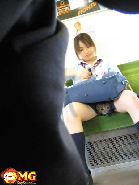 funny-subway-train-pictures-pics-pussycat-skirt-asian