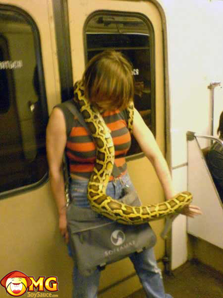 funny-subway-train-pictures-pics-snake
