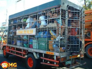 human-trafficking-truck-cage-funny