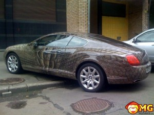 reptile-paint-bentley