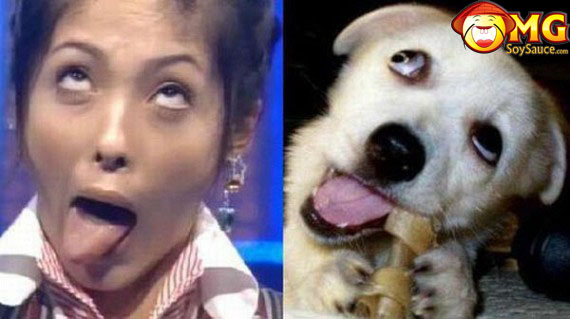 funny-asian-lady-looks-like-dog