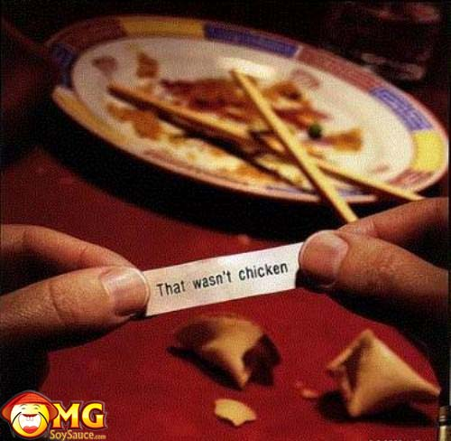 funny-that-wasnt-chicken-fortune-cookie