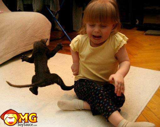 funny-cat-baby-picture