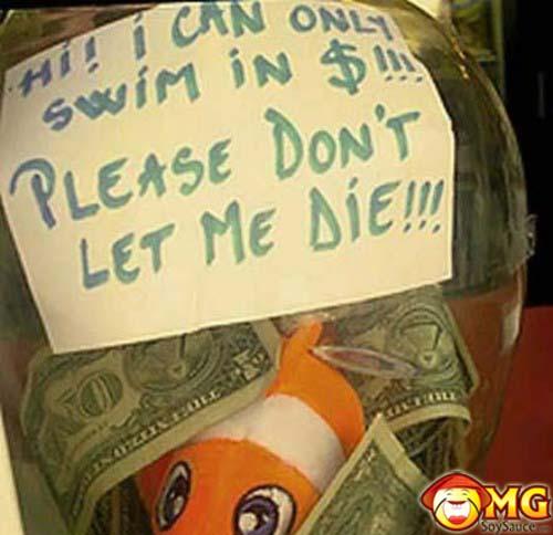 funny-tip-jar-fish