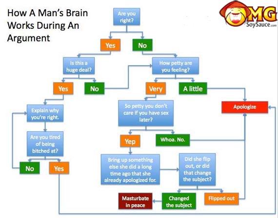 funny-random-man-brain