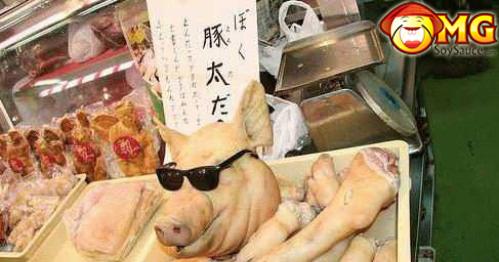 pig-roast-glasses