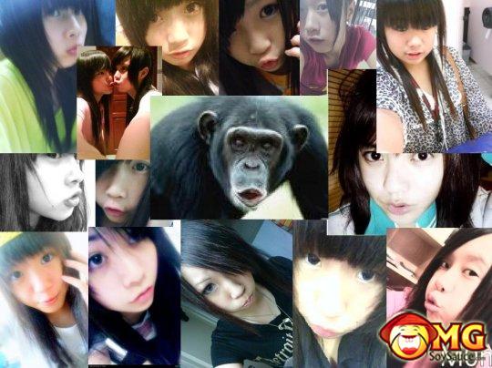 asian-gorilla-monkey-pose-2