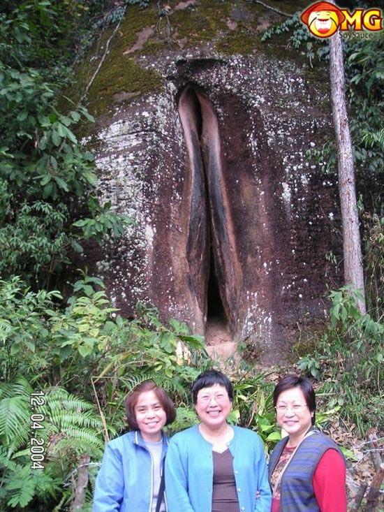 asian-ladies-photo-tree