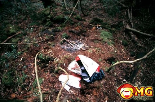 14-aokigahara-suicide-forest-pictures-photos