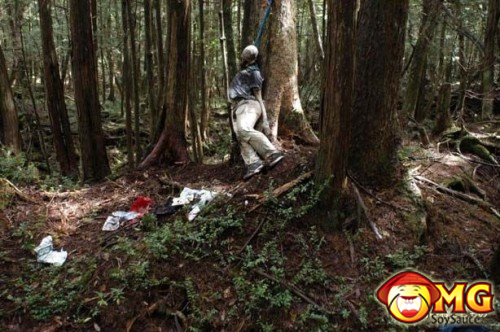 15-aokigahara-suicide-forest-pictures-photos