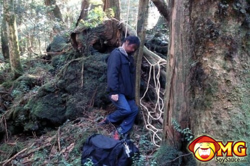 16-aokigahara-suicide-forest-pictures-photos