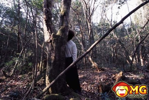17-aokigahara-suicide-forest-pictures-photos