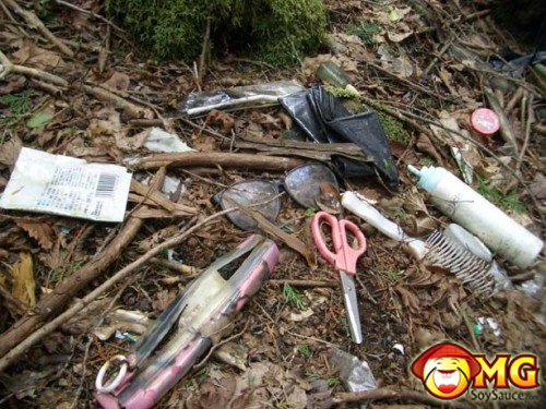 5-aokigahara-suicide-forest-pictures-photos