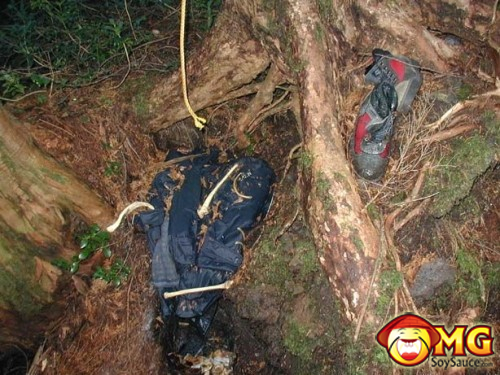 8-aokigahara-suicide-forest-pictures-photos