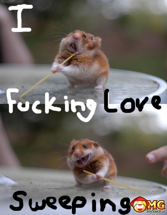 i-love-sweeping-funny-mouse