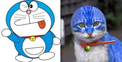 Cosplay babes doraemon is hiding some huge tits - 1 4