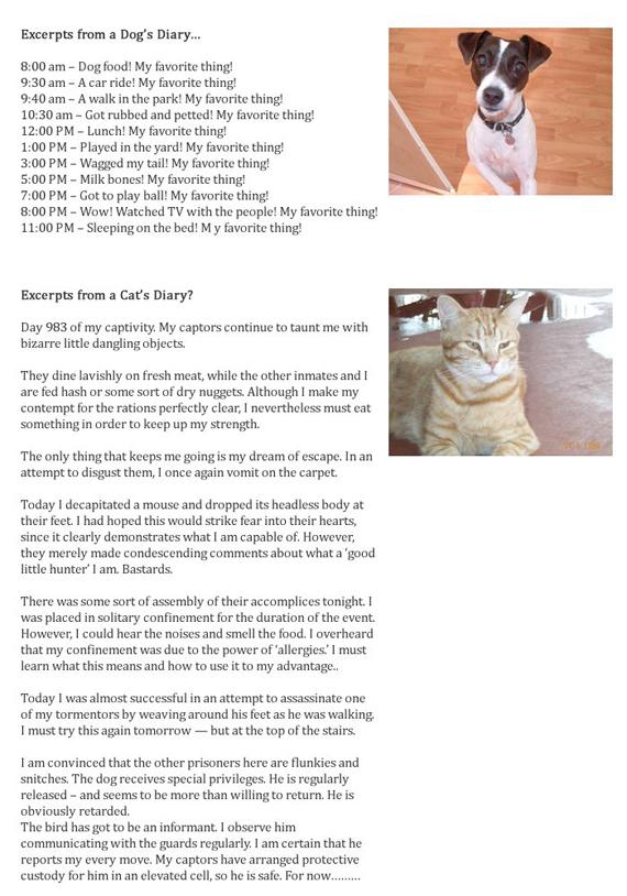 Salon de discussion publique 2011 - Page 2 Day-983-of-my-captivity